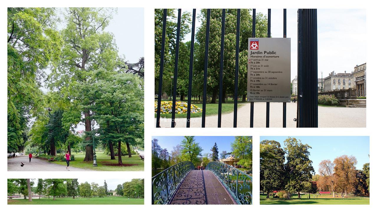 Cascade du Jardin Public